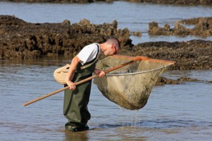 Pêche à l'haveneau