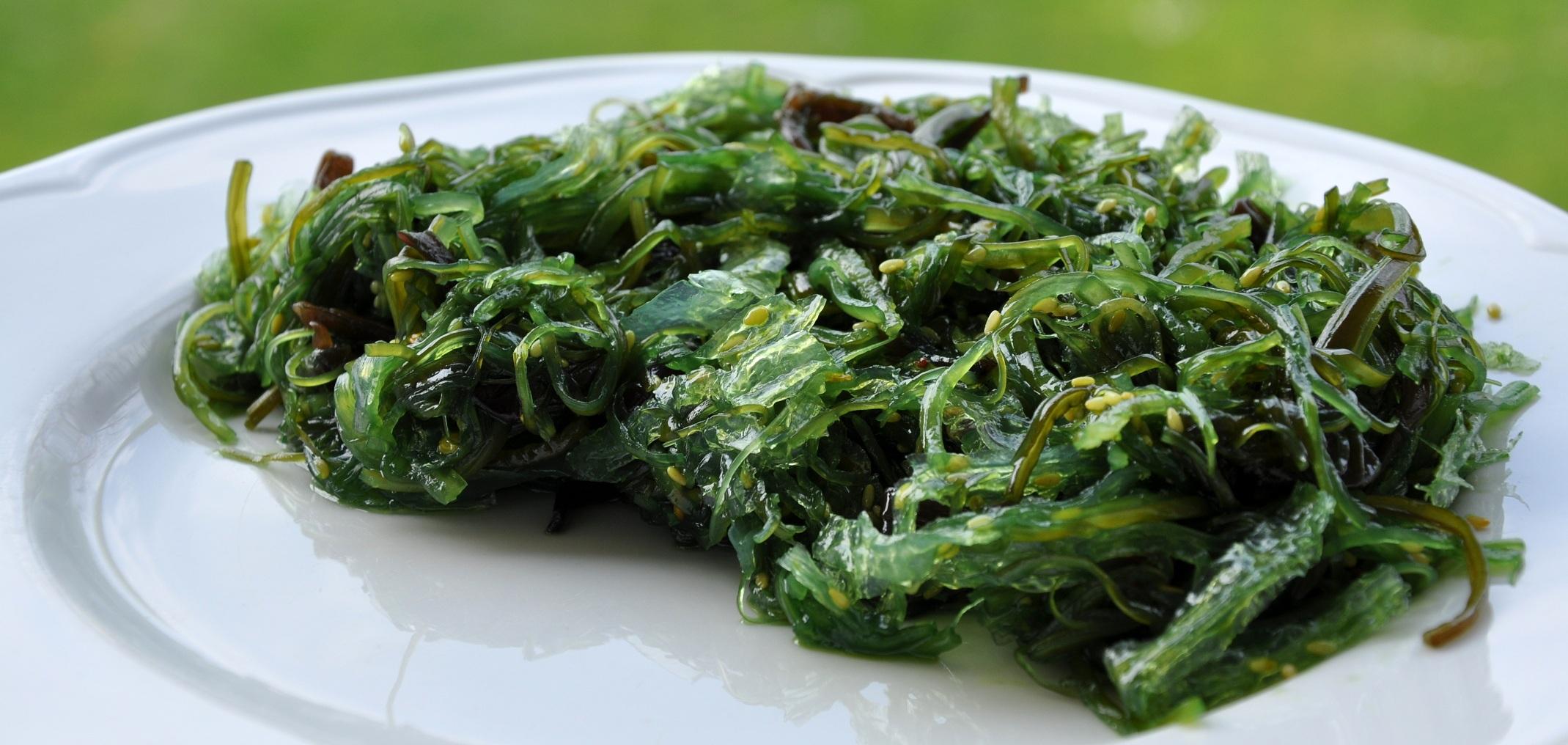 comment cuisiner et utiliser les algues luximer magazine luximer le de la mer