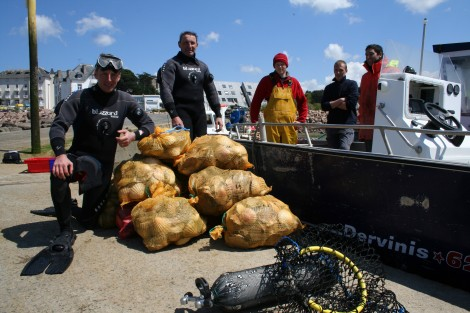 Pêcheurs de Saint-Jacques en plongée - Le Trégor